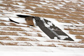 Winter Damaged Roof Shingles