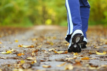 Photo for Woman walking cross country and trail in autumn forest - Royalty Free Image