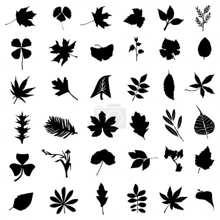 Illustration for Collection of leaf and flower set vector - Royalty Free Image