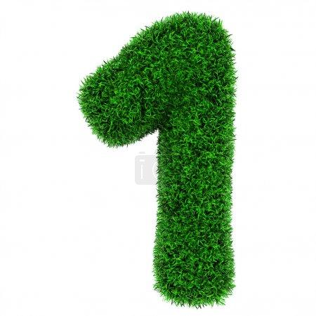 Grass number 1