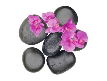 Photo pour Pierre spa noire et fleur d'orchidée rose isolée sur blanc - image libre de droit