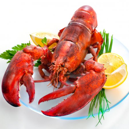 Lobster on dish with parsley and lemon slices...
