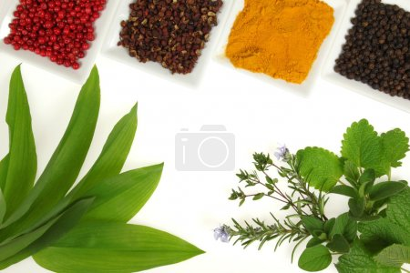 Photo for Herbs and spices composition. Cooking ingredients on a white. - Royalty Free Image