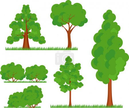 Illustration for A collection of various types and forms of trees bushes grass on a white background in a cartoon effect - Royalty Free Image