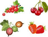 Berry sada