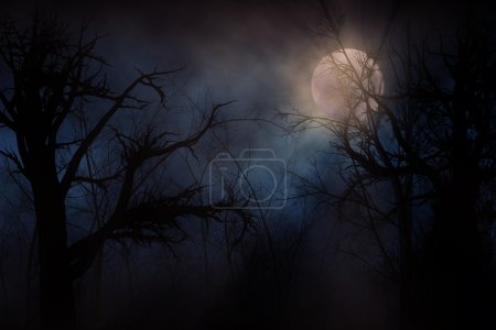 Photo for Illustration of night forest alight with bright moon in clouds - Royalty Free Image