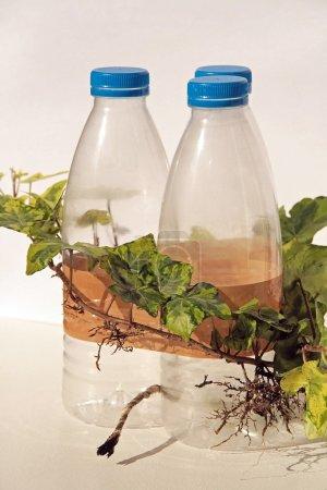Photo pour Bouteilles en plastique explosifs, représentation des dangers des déchets ménagers - image libre de droit