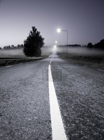 Photo for Rural asphalt road in a foggy evening - Royalty Free Image