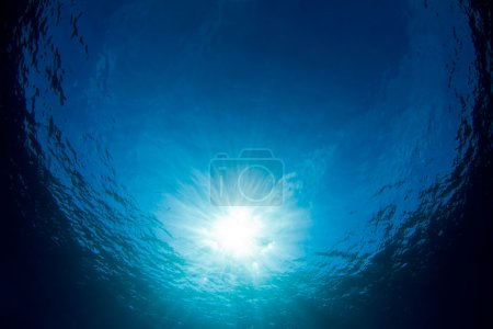 Photo for An underwater background looking up at the sun in crystal clear waters of the Caribbean. - Royalty Free Image