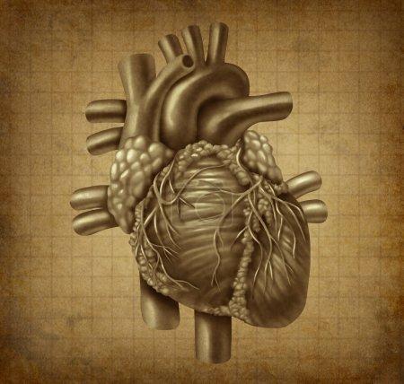 Photo pour Coeur humain vieux texture antiadhésive de grunge vintage comme un symbole médical du sang de pompage cardiaque organe interne comme un concept de santé et de la médecine pour cardiovas - image libre de droit