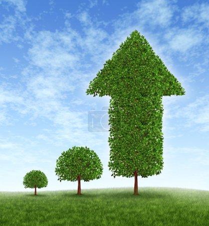 Photo pour Investissement et succès financier avec gestion de planification et de la richesse prudente de l'argent à long terme de plus en plus avec une stratégie de placement représentée par un jeune arbre - image libre de droit