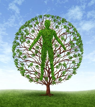 Photo for Human growth and development and personality development as a medical symbol of health as a tree with branches and green leaves in the shape of a persons anatomical body on a blue sky. - Royalty Free Image