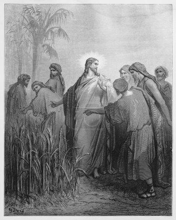 jesus sagt den juengern dass sie