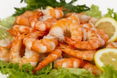 Photo pour Apéritif parfait de bouillie crevettes décortiquées avec citron et herbes - image libre de droit