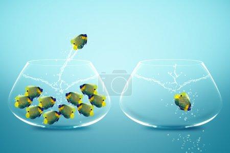 anglefish saltando al tazón de fuente grande