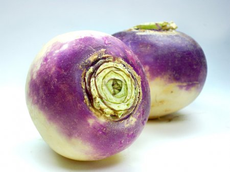 Purple headed turnips on white background