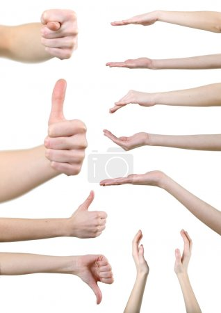 Photo for Set of gesturing hands isolated on white background - Royalty Free Image