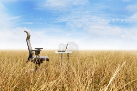 Photo for Outdoor office in a golden grass with a clear sky - Royalty Free Image