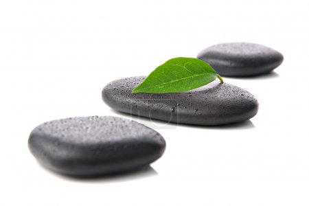 Zen basalt or hot stones with green leaf