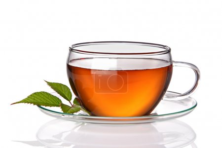 Tea cup with herbal leaves on a white background...