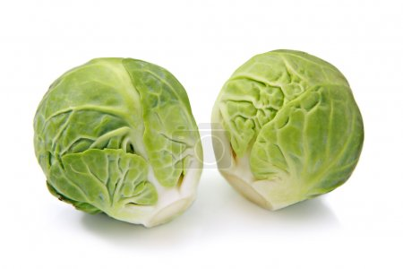 Photo for Two brussels sprouts on a white background - Royalty Free Image