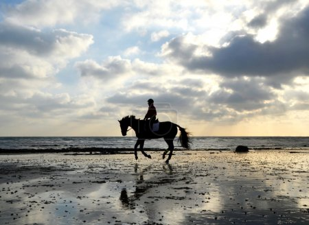 Photo pour Silhouette of Female Horse Rider Galloping on the Sandy Beach with Reflection of the Sky - image libre de droit