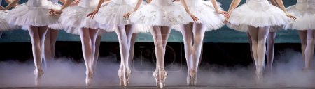 Ballerinas perform on stage