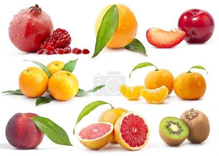 Photo pour Collection de fruits sur fond blanc - image libre de droit