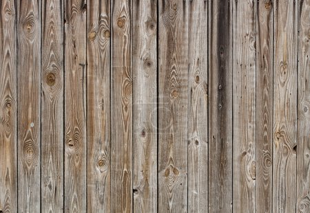 Texture of old wood boards