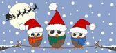 Merry christmas owl owls family