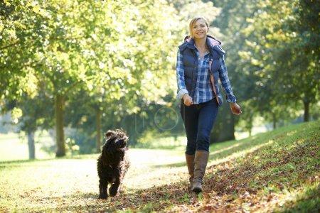 Photo pour Femme promenant son chien noir dans le parc par une journée ensoleillée - image libre de droit