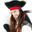 Pirate on white background...