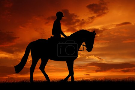Rider on a horse