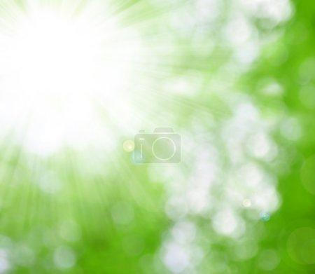 Foto de Fondo natural desenfoque con los rayos del sol - Imagen libre de derechos