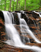 Waterfalls in the Bavarian Forest