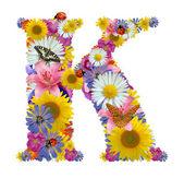 ABC a virágok, pillangók és a katicabogár