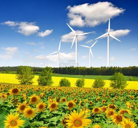 Foto de Turbina eólica contra el cielo azul - Imagen libre de derechos
