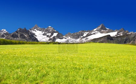 Photo pour Belle montagne Ober Gabelhorn et Zinalrothorn - Alpes suisses - image libre de droit
