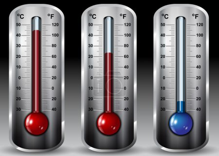 Full Vector Thermometer