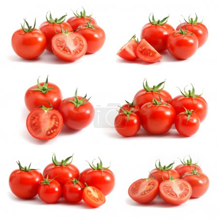 Photo for Tomatoes collection isolated on white - Royalty Free Image