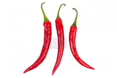 Photo for Three bright red chili peppers on white background - Royalty Free Image