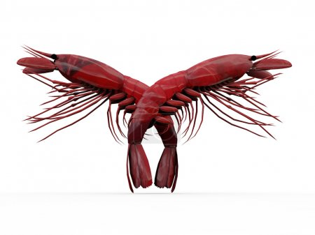 Photo for Crayfishes isolated on white background - Royalty Free Image