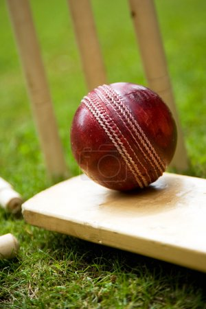 Photo for Red leather cricket ball on a bat with stumps behind - Royalty Free Image