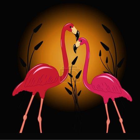 Two enamoured flamingos