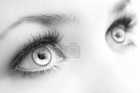 Photo for Beautiful female eyes, very close, black-and-white. Expressive sight - Royalty Free Image