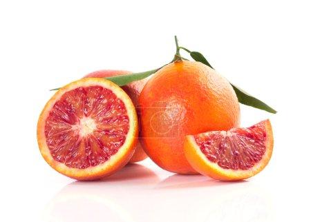 Photo pour Rouges sang oranges isolés sur fond blanc - image libre de droit