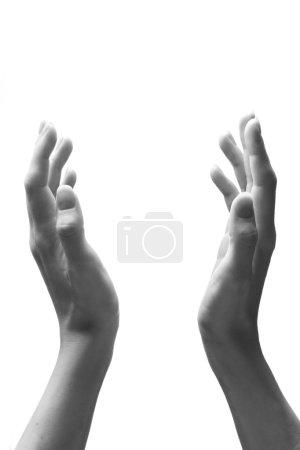 Photo pour Mains féminines en version blanche et noire - image libre de droit