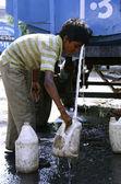 Mladík doplňování vody v plechovkách, Dillí, Indie