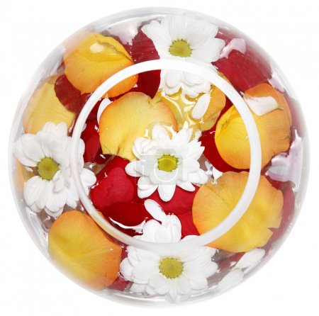 Daisies and rose petals in a round transparent glass vase