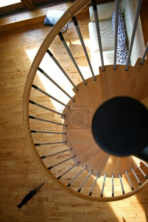 Spiral staircase with running cat